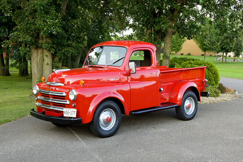 1949 dodge, pickup, dodge, photo