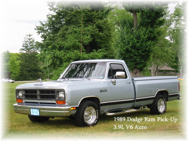 Canadian89Ram's 1989 Dodge D150 Regular Cab